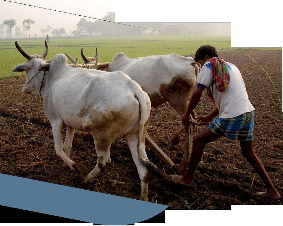 Nammalvar-Farmer's-Program-image