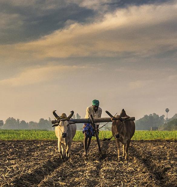 Nammalvar Farmer's Program