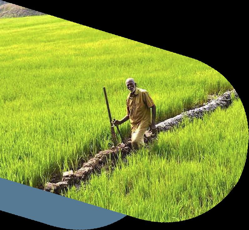 Nanban Foundation and Nammalvar's Vanagam Collaboration.